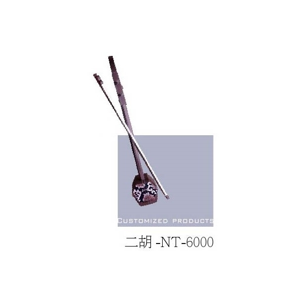 NT - 6000